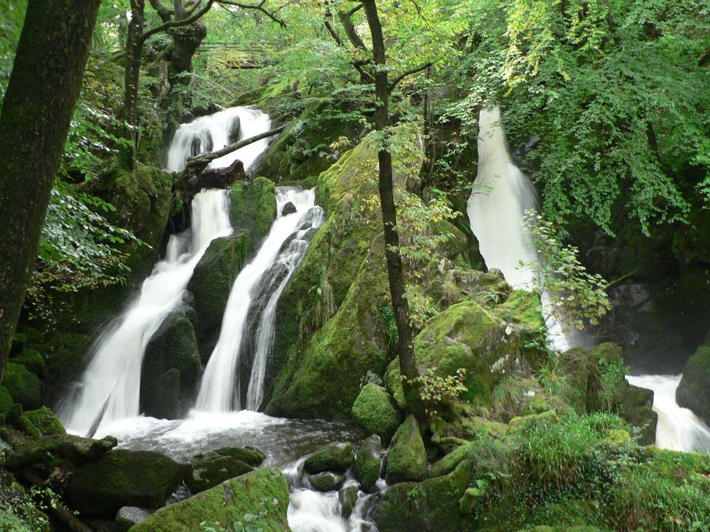Things to Do in Ambleside – Stock Ghyll Force