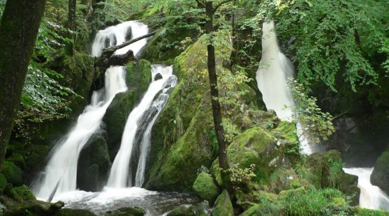 Visit Stock Ghyll Force Waterfall in Ambleside whilst staying at Skelwith Fold