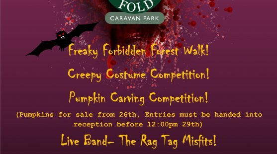 Enjoy some halloween celebrations and competitions at Skelwith Fold Caravan Park