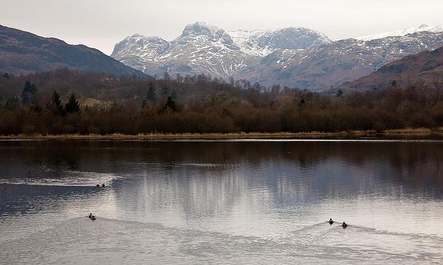 Best Lake District Walks – Elter Water