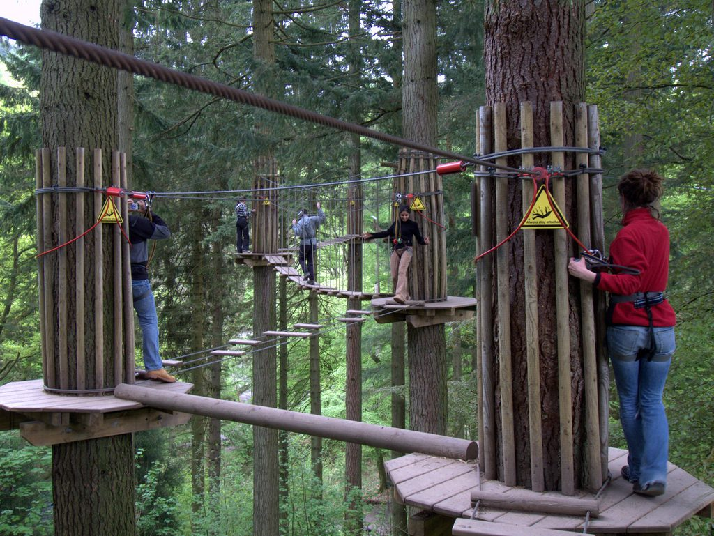 Enjoy a tree top adventure in the Lake District whilst staying at Skelwith Fold
