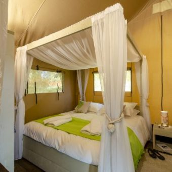 Safari Tents Bedroom