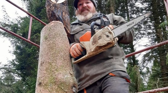 Timber carving. Wooden stump sculptor owl Skelwith Fold Caravan Park Ambleside