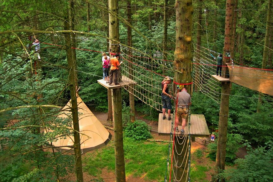 Go Ape Grizedale Forest. Child friendly attractions in the Lake District.