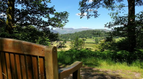 View Across Langdales Bench